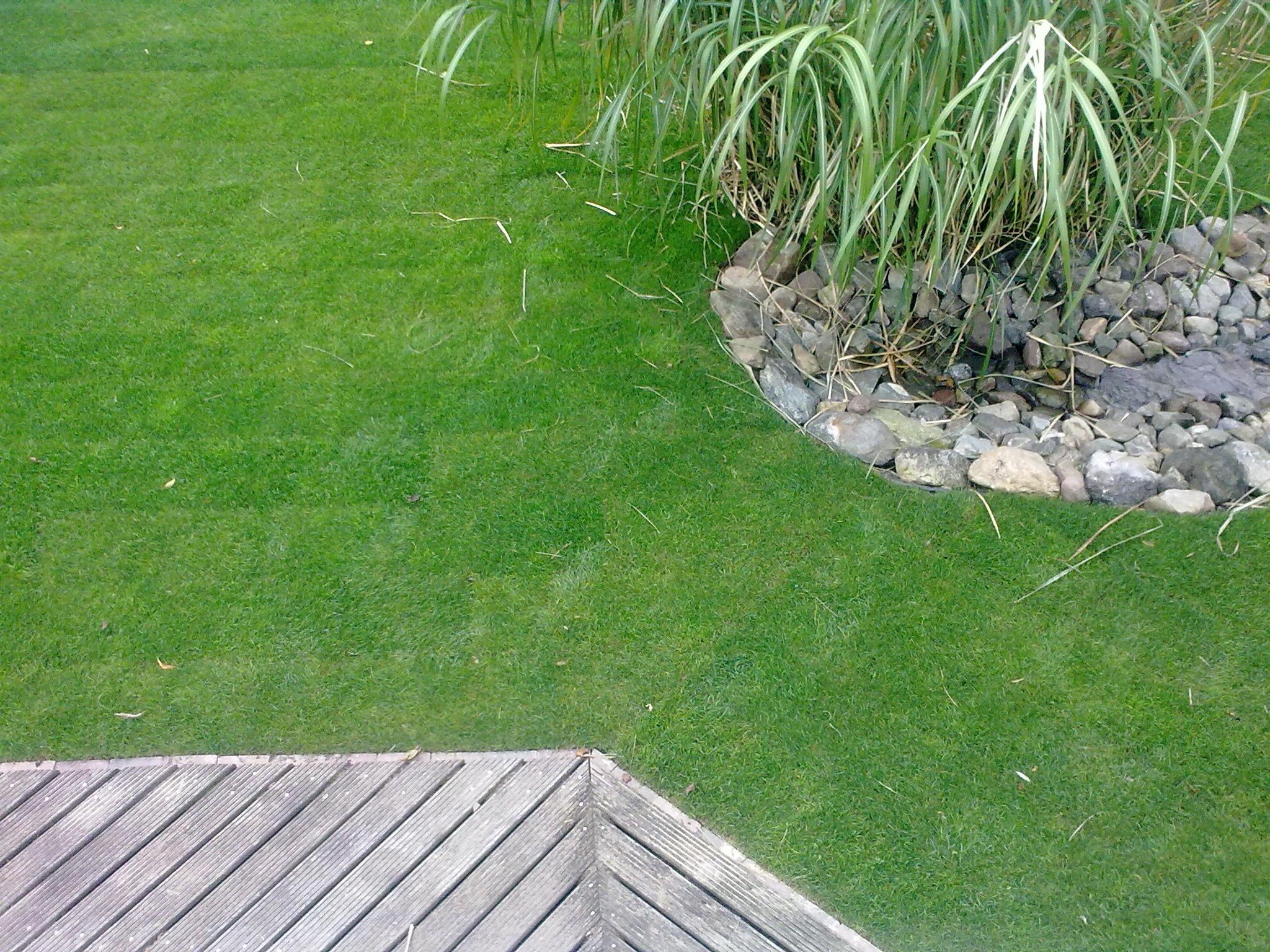 Tuin aanleggen lelystad door ons aangelegde tuinen